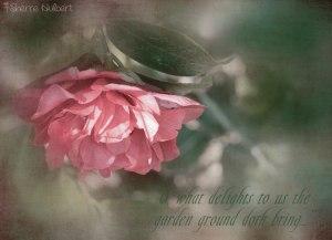 Camellia-with-Cora
