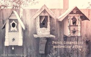 Perch-Long