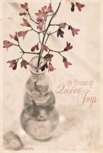 Quiet-Joys
