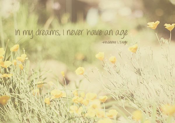 Poppy-Dreams-copy