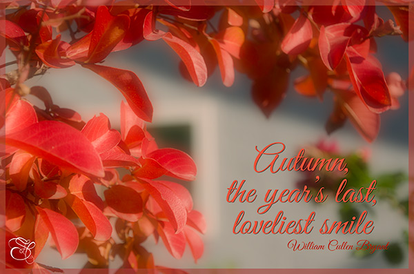Autumn,-the-year's-last-loveliest-smile-copy