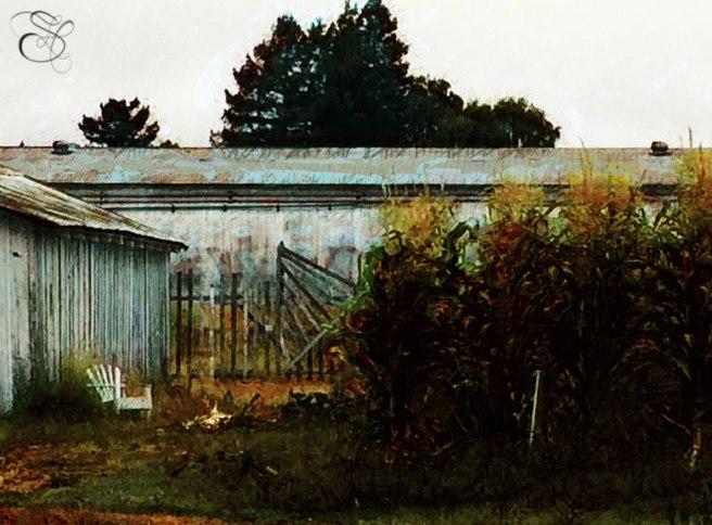 Cornell-Barn-Artomatic-Filter