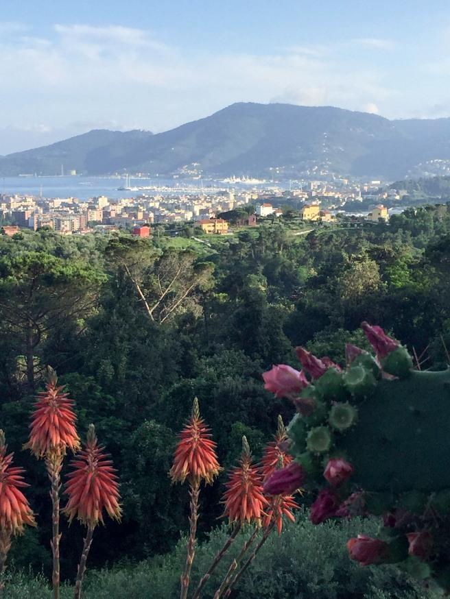 Villa Amaranta View.jpg